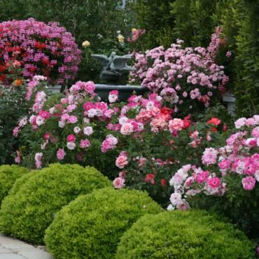 Gardens Featuring