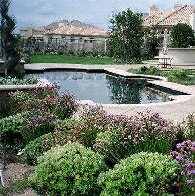 The Stunning Landscape Design Idea